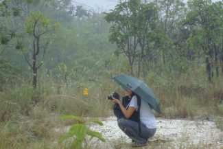 Fotografando detalhes da chuva