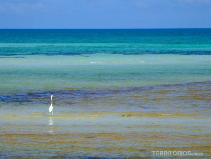 Mar caribenho