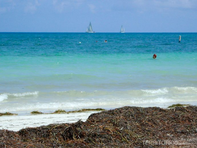 Mar do Caribe de novo