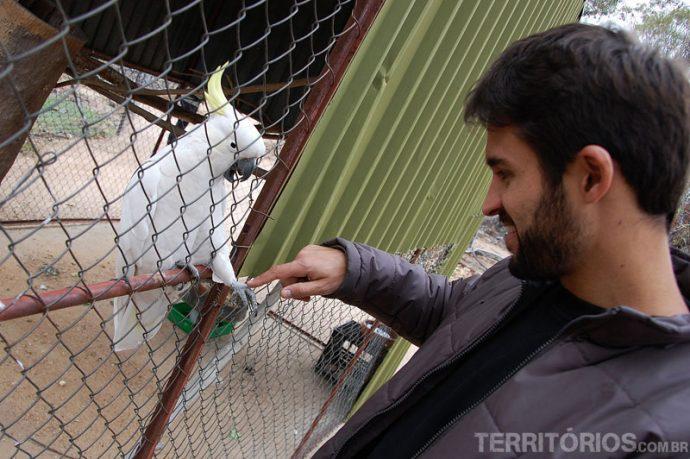 Leandro interagindo com cacatoa
