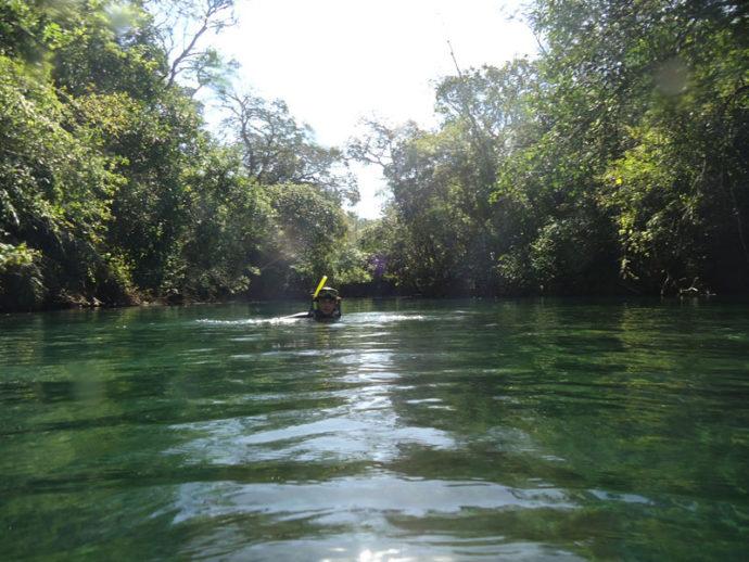 Mergulhando com snorkel noRecanto Ecológico