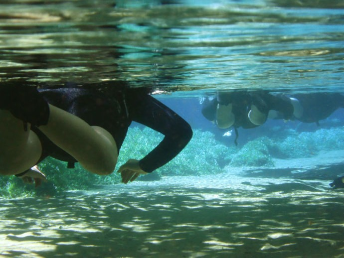 Mergulhando em águas transparentes no Rio da Prata, um paraíso sem igual