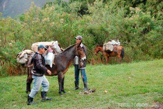 Mochilas levadas por burros