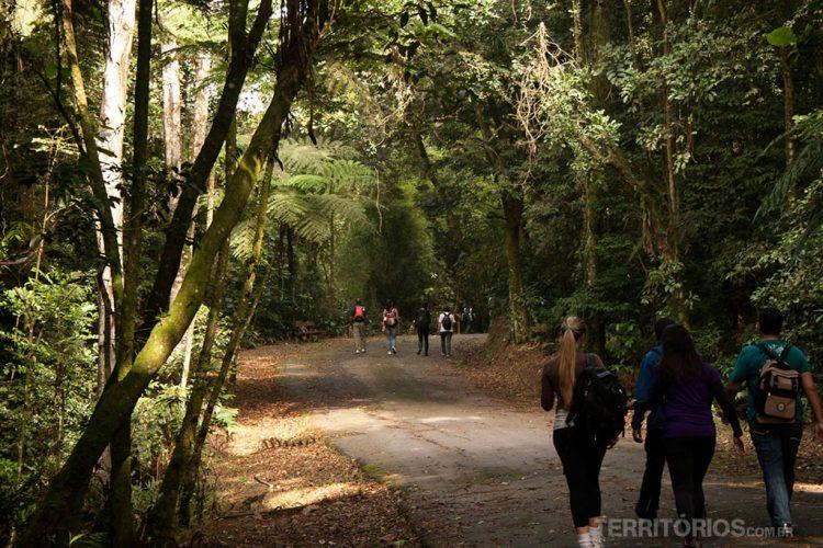 40 trilhas de São Paulo