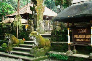Templo na Sagrada Floresta dos Macacos