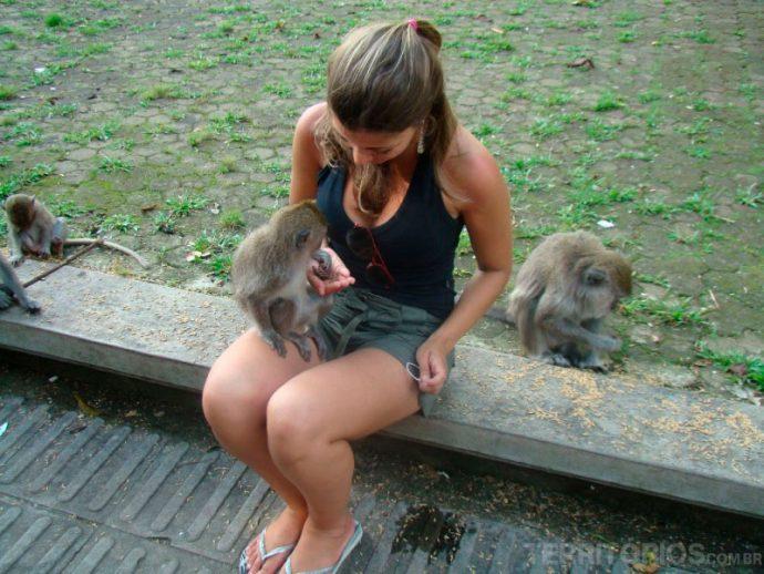 Interagindo com os macacos