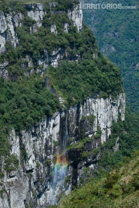 Eterno arco-íris