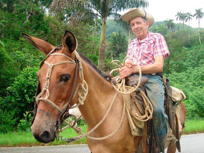 Um gaúcho cubano, ou melhor, um guajiro