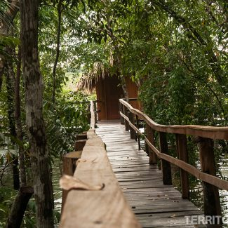 Juma Amazon Lodge hotel de selva