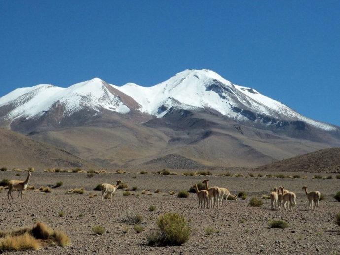 Bolívia por Nilton Nogueira