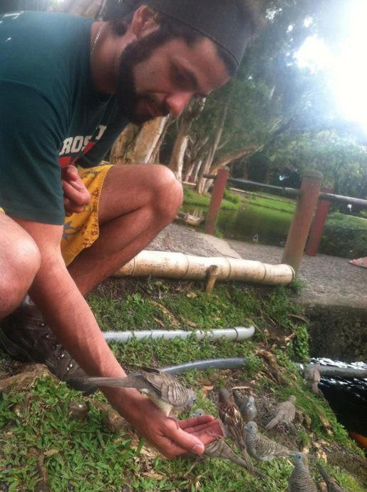 Alimentando pássaros num monastério em Oahu
