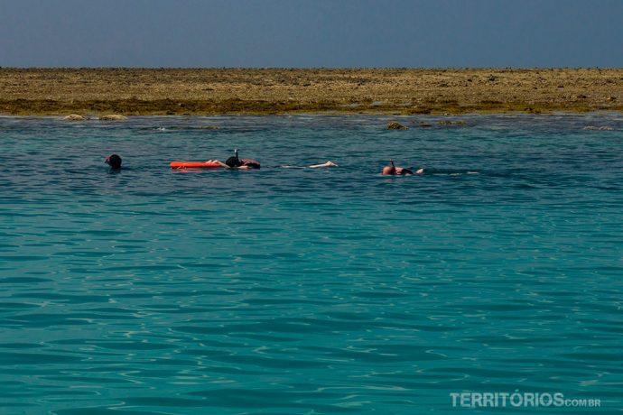 Na maré baixa nadamos a menos de 1 metro acima dos corais na região de Mombasa
