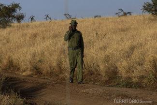 Falando ao telefone no meio da savana
