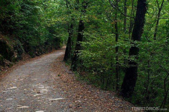 Estrada nos Apeninos no outono