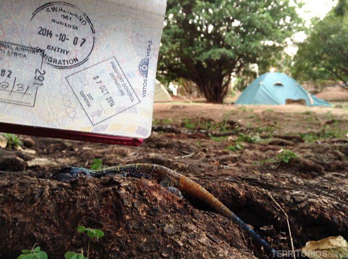 O carimbo de entrada clicado na área de camping no hostel