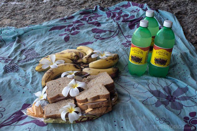 Piquenique em Crane Beach com a melhor Ginger Beer de lá