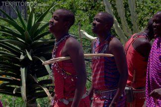 Maasais trabalham com suas roupas tradicionais e auxiliam os hóspedes
