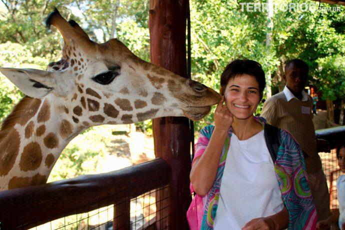 Giraffe Center é uma das atrações em Karen