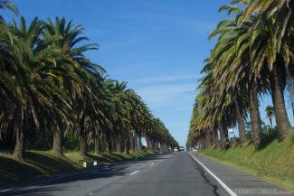 Ruta 1 saindo de Colônia de Sacramento em direção à Montevidéu