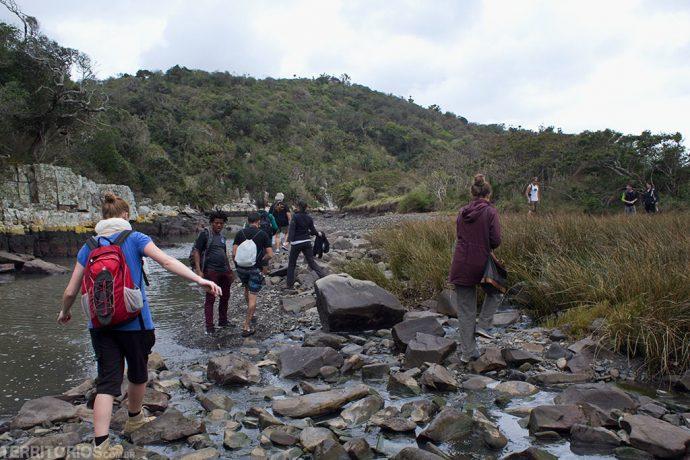 Trilha para mergulho no rio