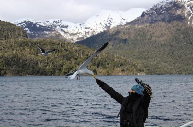 O meu momento com a gaivota foi registrado pela Mariana Amaral, do Viaje na Viagem