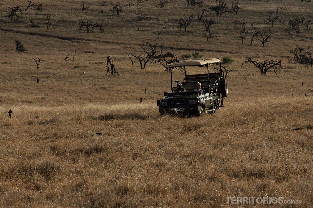 Safari 4x4 em Lewa