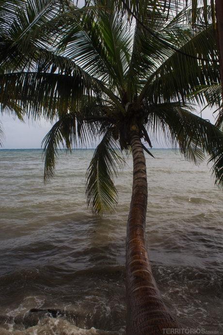 Água do mar em Providência depois da chuva. Agora observe o normal na última foto desta página