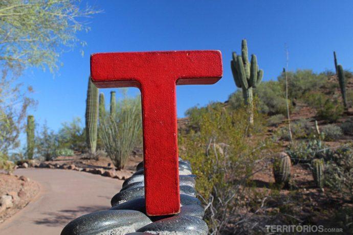T no Desert Botanical Garden, em Phoenix