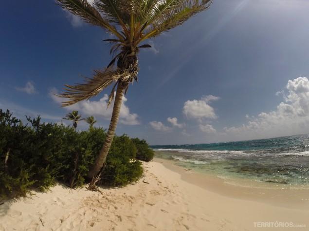 Corais e vegetação de Johnny Cay