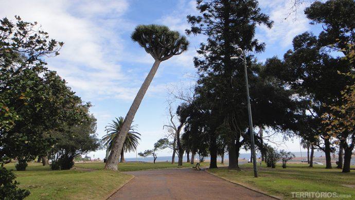 Parque Roldó