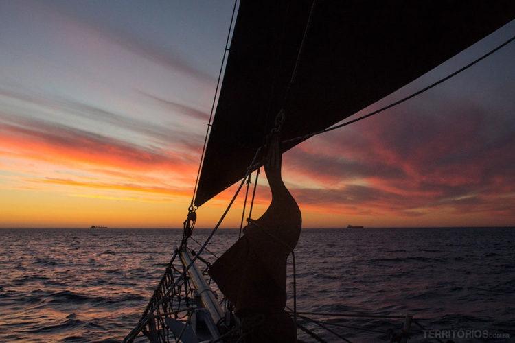 Passeio de barco em Cape Town - África do Sul