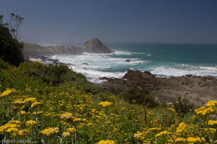 África do Sul é dica para viajar em novembro