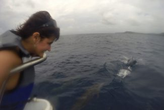 Feliz da vida com os golfinhos