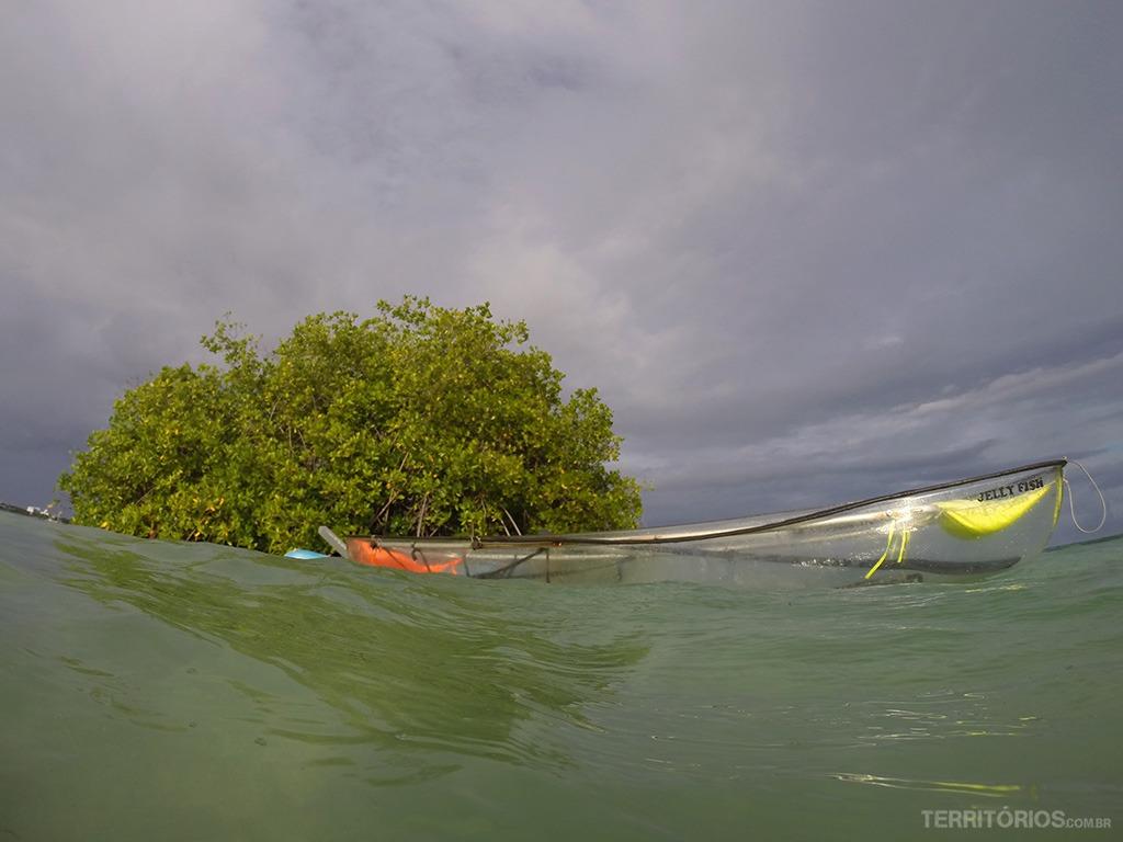 Eco Fiwi, um tour diferente no Caribe » Territórios | Por Roberta Martins