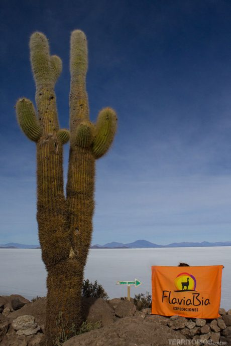 No topo da Isla Incahuasi