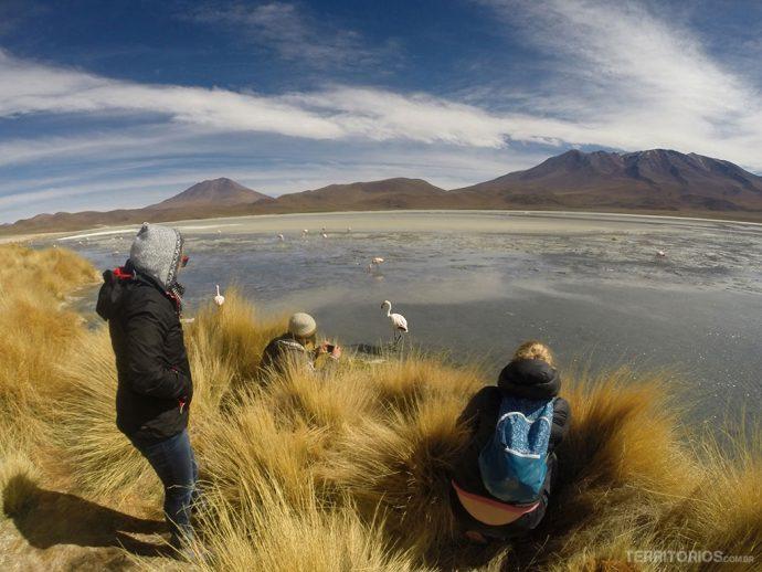 Bem pertinho dos flamingos na Laguna Hedionda