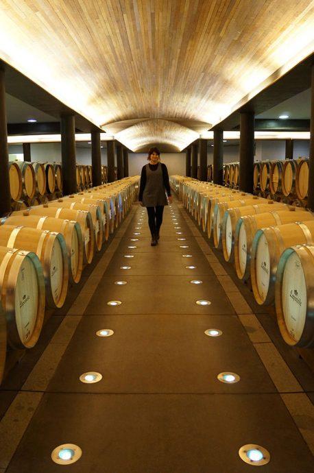 No tour pela vinícola