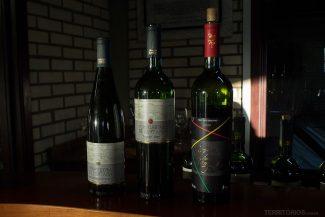 Vinhos provados desta vez