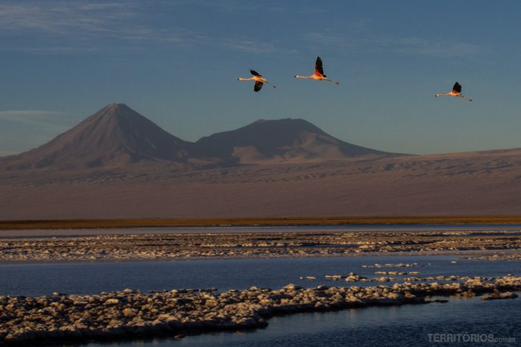 Lagoa Tebinquiche, parte do Salar de Atacama em San Pedro de Atacama - Chile