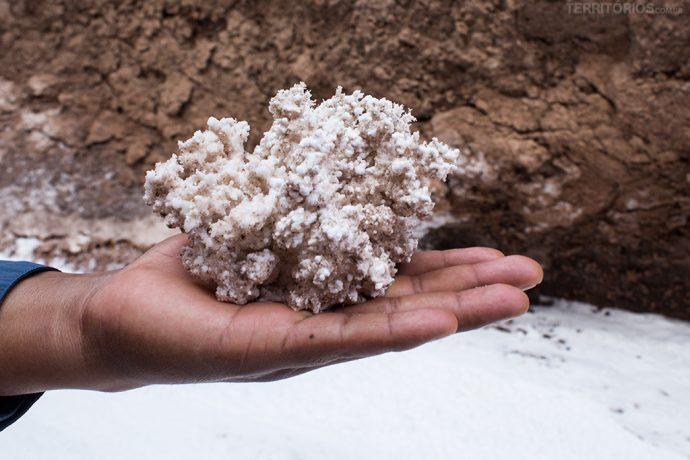 Coral de sal
