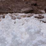 Corais de sal