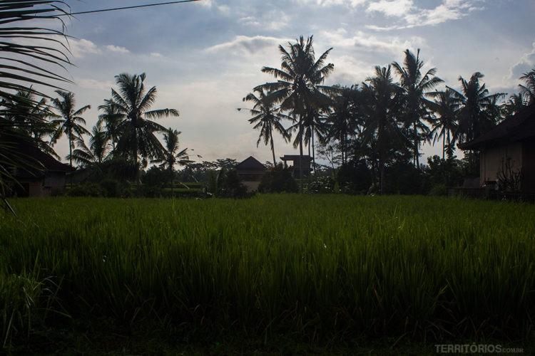 Transporte em Bali