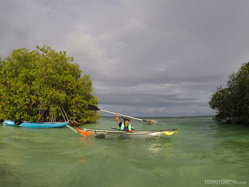 Caiaque transparente nos manguezais do Caribe