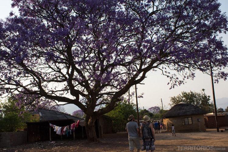 Melhores fotos da Suazilândia