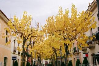 Outlet próximo a Barcelona