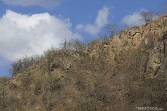 A caatinga na Rota do Cangaço