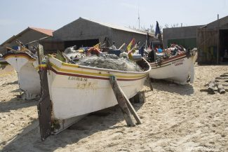 Praia do Cardoso