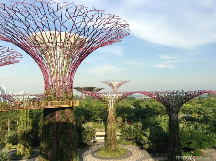 SuperTrees do Gardens by the Bay
