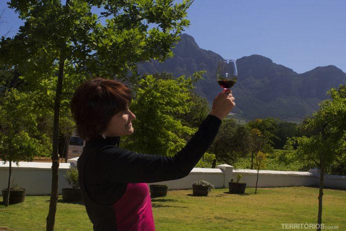 Dia de conhecer vinícolas em Stellenbosch