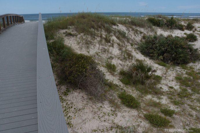 Trilhas em passarelas no parque das dunas